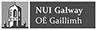 NUIG - Logo