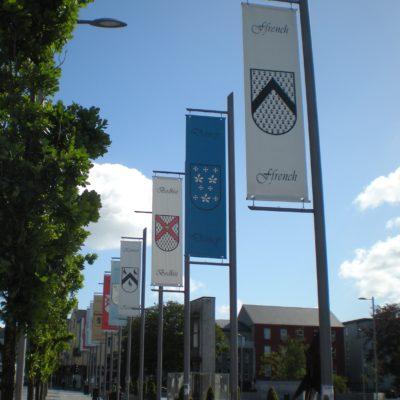 Galway Medieval - Flags